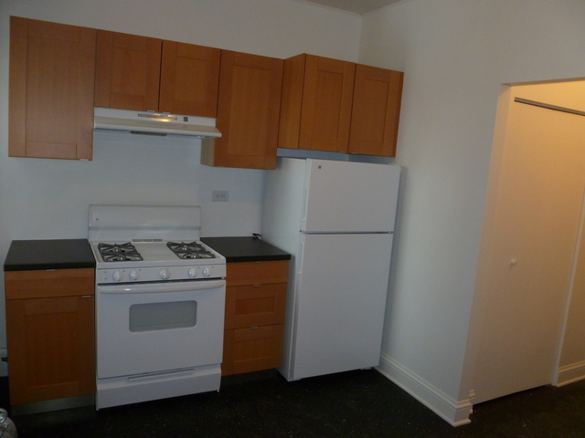 3 Bedrooms, Hyde Park Rental in Chicago, IL for $3,450 - Photo 1
