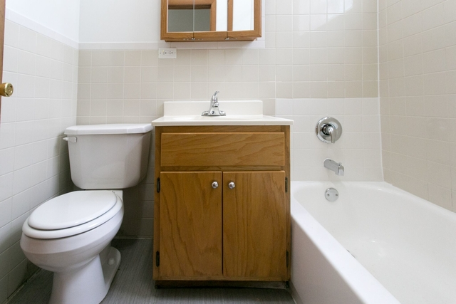 1 Bedroom, Hyde Park Rental in Chicago, IL for $1,400 - Photo 2