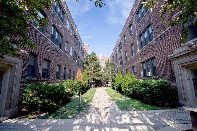 1 Bedroom, Hyde Park Rental in Chicago, IL for $1,320 - Photo 1