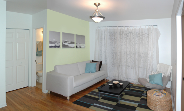 Studio, Hyde Park Rental in Chicago, IL for $1,000 - Photo 1