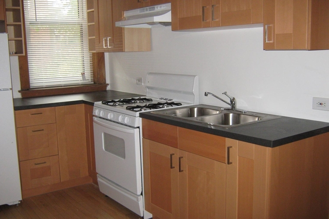 4 Bedrooms, Hyde Park Rental in Chicago, IL for $4,600 - Photo 1