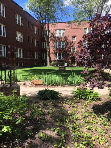 1 Bedroom, Sheridan Park Rental in Chicago, IL for $1,250 - Photo 1
