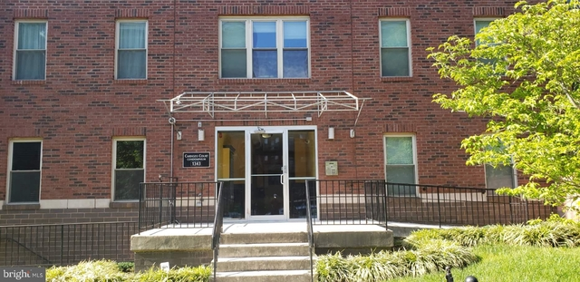 3 Bedrooms, Columbia Heights Rental in Washington, DC for $3,500 - Photo 2