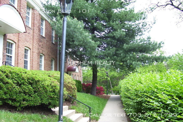 2 Bedrooms, Lyon Park Rental in Washington, DC for $1,790 - Photo 1