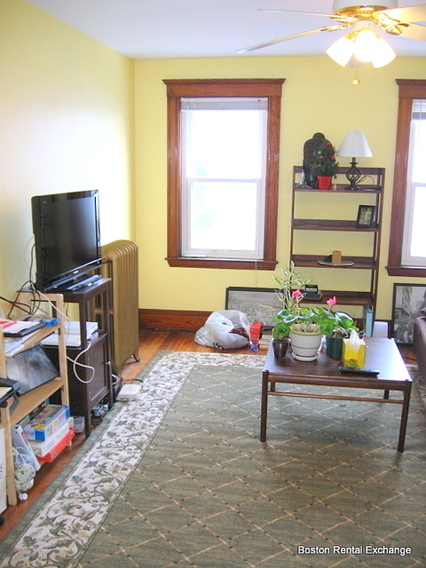 1 Bedroom, Spring Hill Rental in Boston, MA for $1,750 - Photo 2