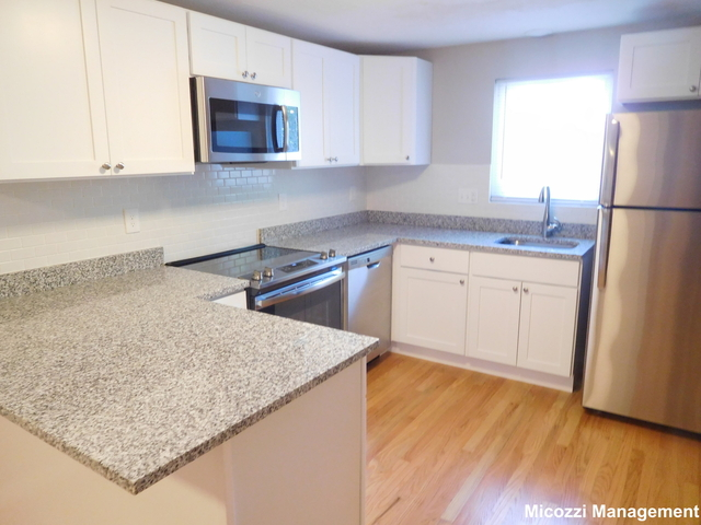 1 Bedroom, South Side Rental in Boston, MA for $2,095 - Photo 1