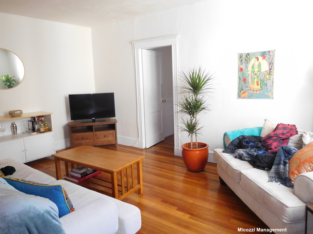 3 Bedrooms, Mid-Cambridge Rental in Boston, MA for $3,695 - Photo 2