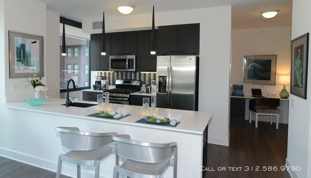2 Bedrooms, The Loop Rental in Chicago, IL for $3,462 - Photo 2