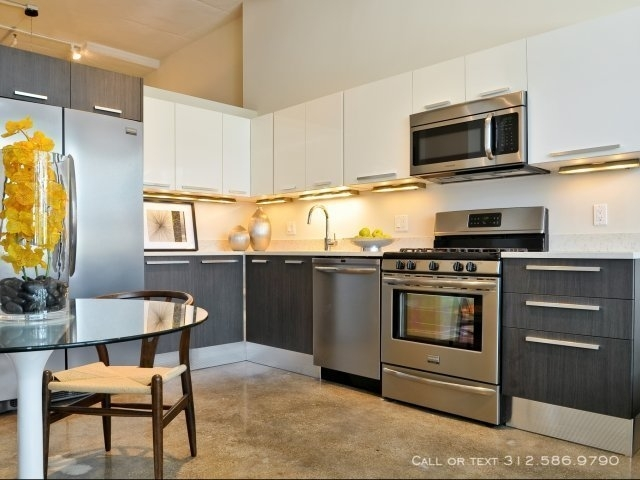 2 Bedrooms, West Town Rental in Chicago, IL for $2,720 - Photo 2