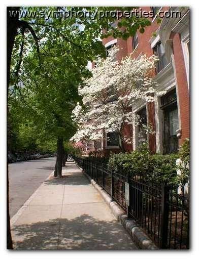 1 Bedroom, Fenway Rental in Boston, MA for $2,400 - Photo 1