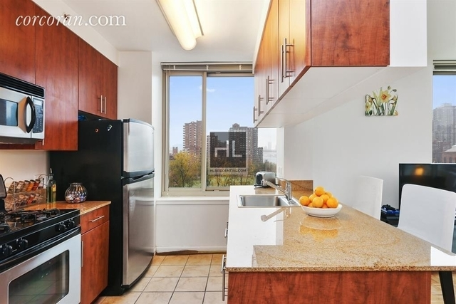 3 Bedrooms, Roosevelt Island Rental in NYC for $6,015 - Photo 2