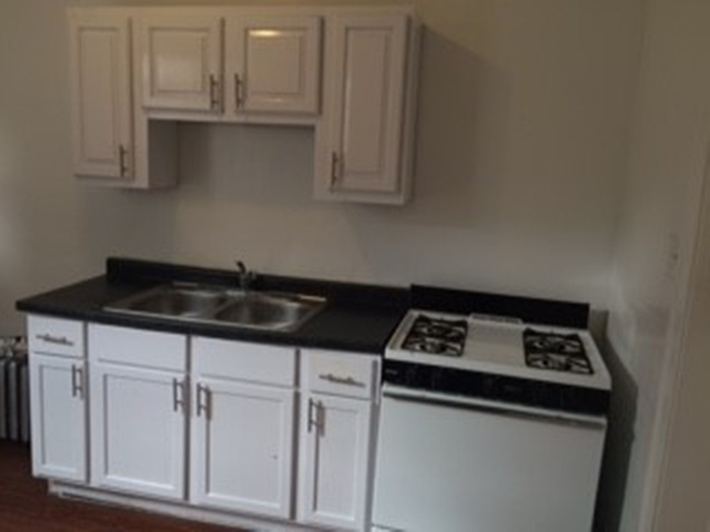 2 Bedrooms, Hyde Park Rental in Chicago, IL for $1,238 - Photo 1