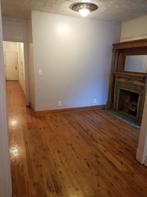 3 Bedrooms, Prospect Heights Rental in NYC for $2,500 - Photo 1
