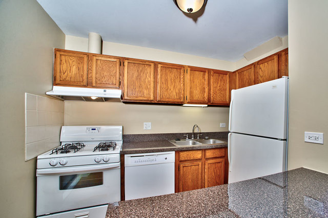 2 Bedrooms, Oak Park Rental in Chicago, IL for $1,875 - Photo 2