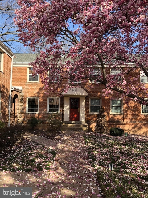 1 Bedroom, Lyon Park Rental in Washington, DC for $1,600 - Photo 2