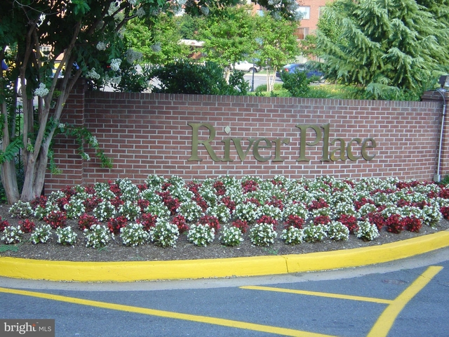 Studio, Radnor - Fort Myer Heights Rental in Washington, DC for $1,595 - Photo 2