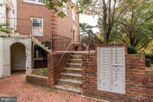 2 Bedrooms, Cathedral Heights Rental in Washington, DC for $3,500 - Photo 2