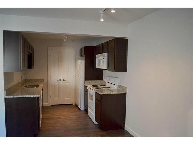 1 Bedroom, Monticello Rental in Dallas for $975 - Photo 2