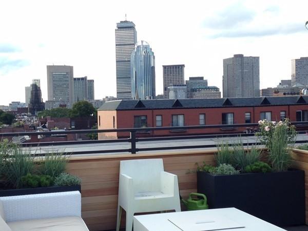 2 Bedrooms, Harrison Lenox Rental in Boston, MA for $5,950 - Photo 2