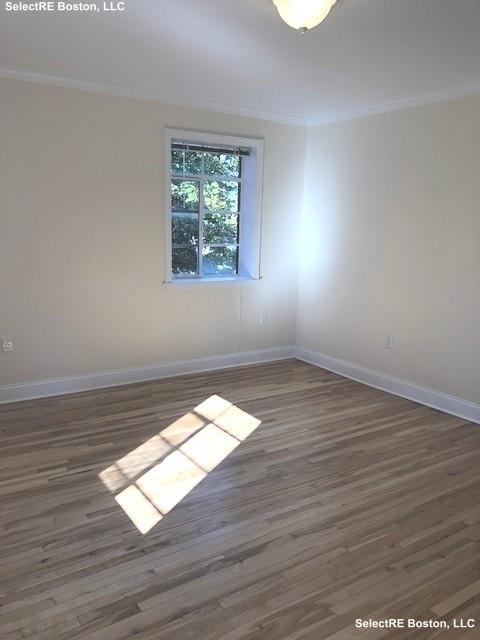 2 Bedrooms, Coolidge Corner Rental in Boston, MA for $3,295 - Photo 2