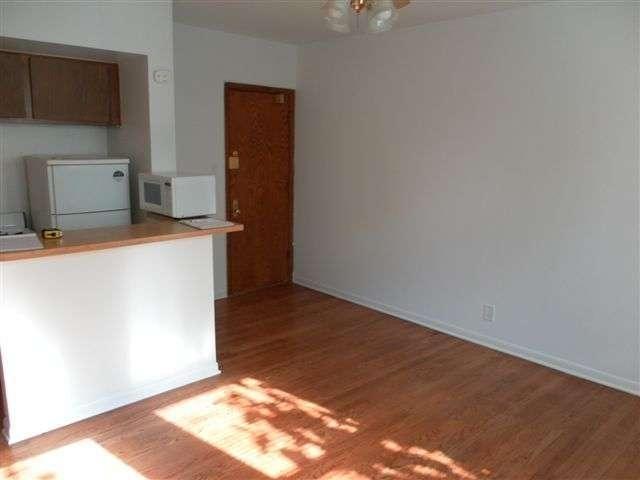 Studio, Gold Coast Rental in Chicago, IL for $917 - Photo 2