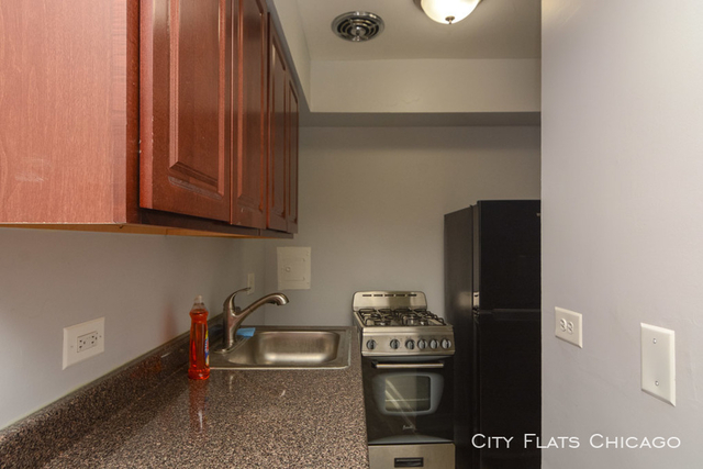 Studio, Edgewater Beach Rental in Chicago, IL for $875 - Photo 2