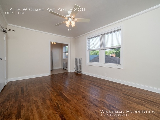 Studio, Rogers Park Rental in Chicago, IL for $895 - Photo 2