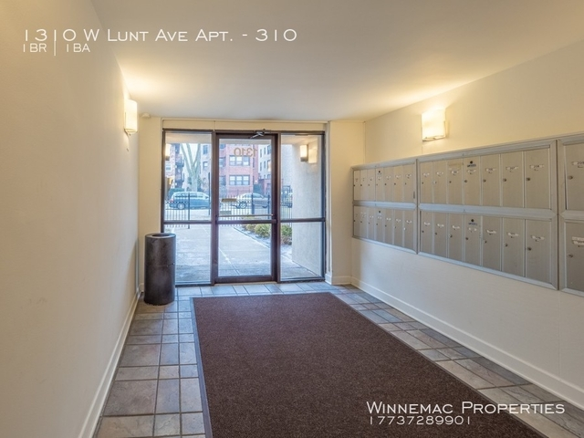 1 Bedroom, Rogers Park Rental in Chicago, IL for $1,050 - Photo 2