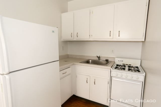 1 Bedroom, Lakeview Rental in Chicago, IL for $1,274 - Photo 2