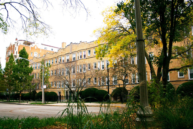 1 Bedroom, Sheridan Park Rental in Chicago, IL for $1,195 - Photo 1