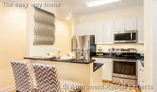 1 Bedroom, Neighborhood Nine Rental in Boston, MA for $3,335 - Photo 2