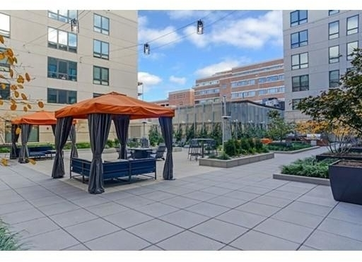 2 Bedrooms, East Cambridge Rental in Boston, MA for $4,215 - Photo 2