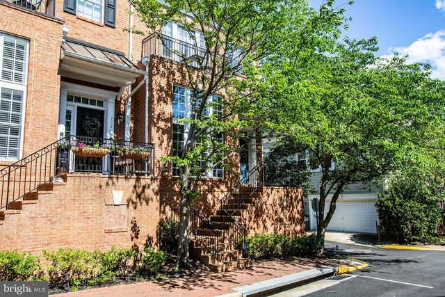3 Bedrooms, Belmont Center South Rental in Washington, DC for $2,900 - Photo 1