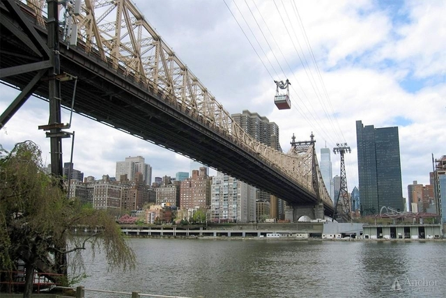 2 Bedrooms, Roosevelt Island Rental in NYC for $4,300 - Photo 2