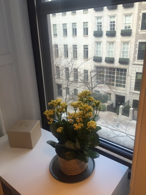 1 Bedroom, Lenox Hill Rental in NYC for $2,495 - Photo 2