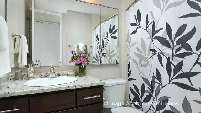 Studio, Near East Side Rental in Chicago, IL for $1,905 - Photo 2