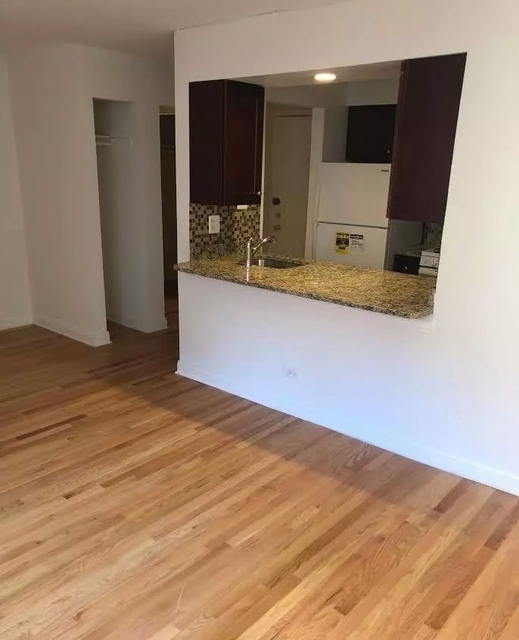 Studio, Lake View East Rental in Chicago, IL for $1,100 - Photo 1