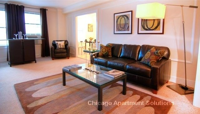 2 Bedrooms, Park West Rental in Chicago, IL for $1,980 - Photo 2