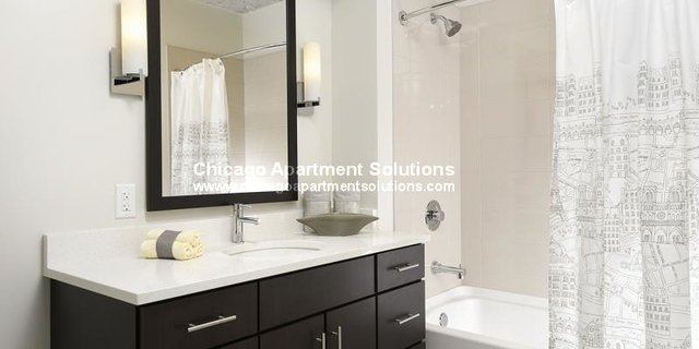 1 Bedroom, Greektown Rental in Chicago, IL for $2,471 - Photo 2