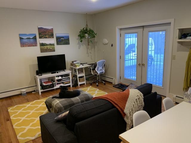 1 Bedroom, Harrison Lenox Rental in Boston, MA for $2,550 - Photo 1