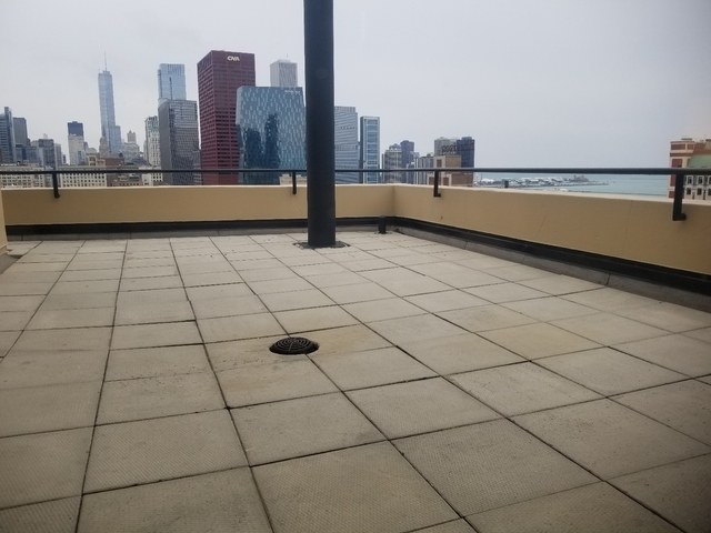 2 Bedrooms, South Loop Rental in Chicago, IL for $6,394 - Photo 1