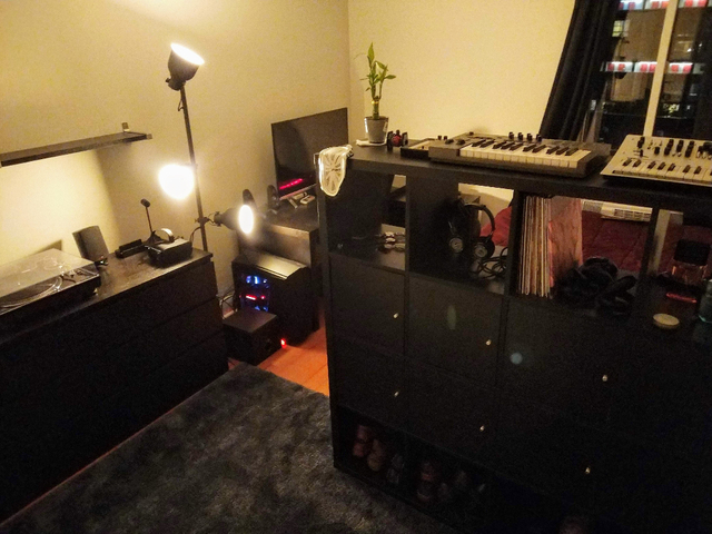 Room, Roosevelt Island Rental in NYC for $1,390 - Photo 2
