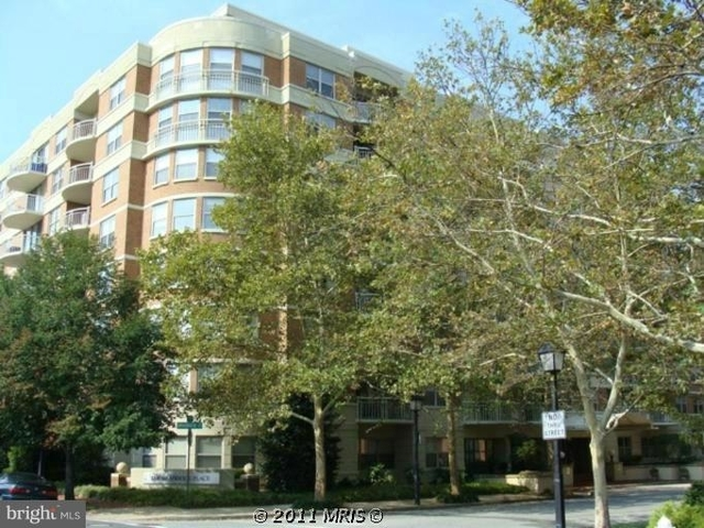1 Bedroom, Braddock Place Condominiums Rental in Washington, DC for $1,700 - Photo 1