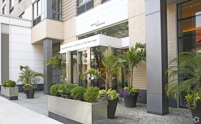 Studio, Jamaica Rental in NYC for $1,800 - Photo 2