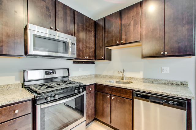 1 Bedroom, Hyde Park Rental in Chicago, IL for $1,365 - Photo 1