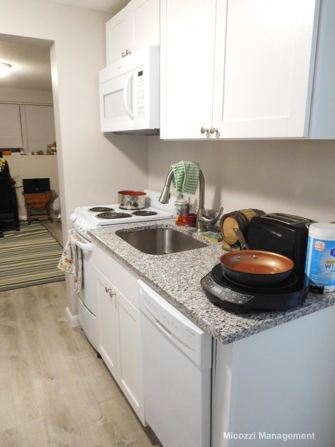 Studio, South Side Rental in Boston, MA for $1,495 - Photo 1