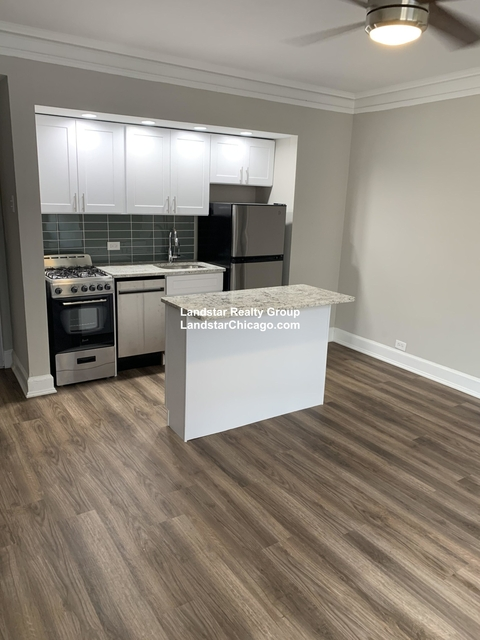 Studio, Park West Rental in Chicago, IL for $1,245 - Photo 1