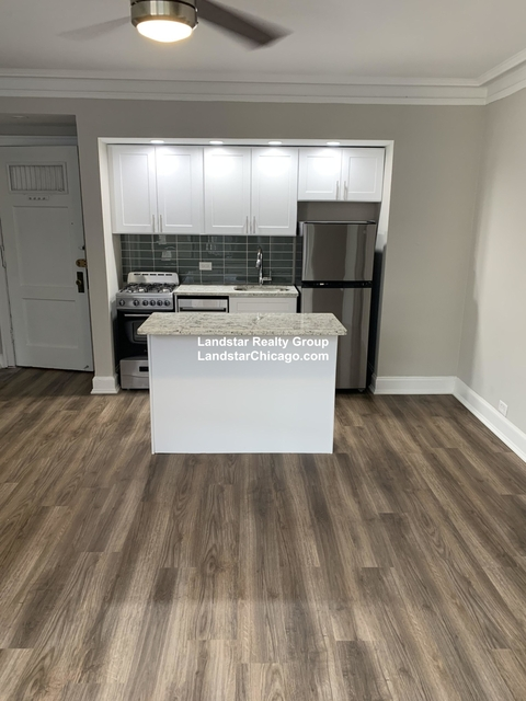 Studio, Park West Rental in Chicago, IL for $1,245 - Photo 2