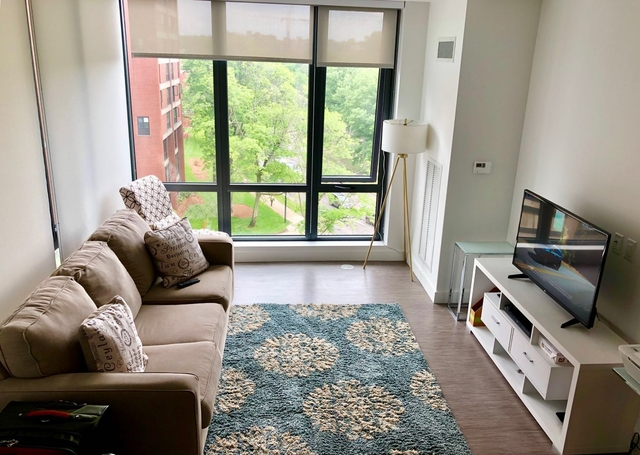 2 Bedrooms, Medical Center Area Rental in Boston, MA for $3,650 - Photo 1