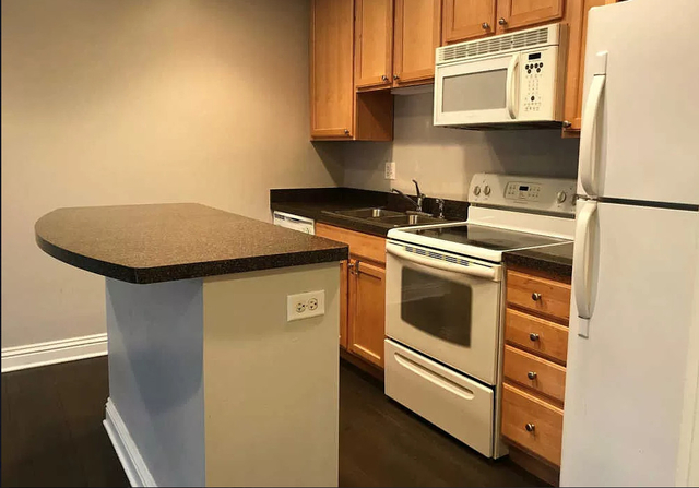 1 Bedroom, Andersonville Rental in Chicago, IL for $1,200 - Photo 2